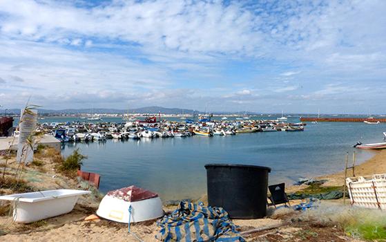 FET_Liebhaverboligen_Rejsereportage_Algarve_Havnen i detlille fiskersamfund på øen Culatra