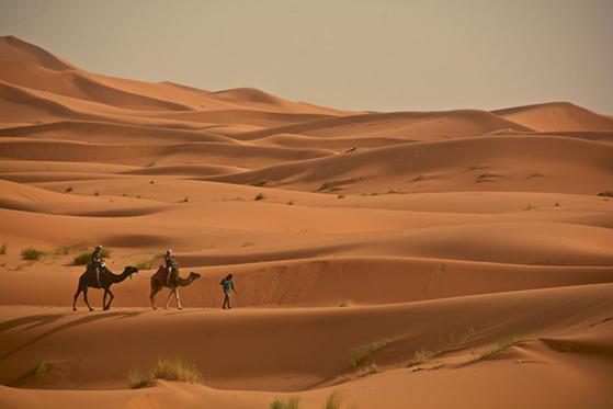 FET_Regitses_Rejseunivers_marokko