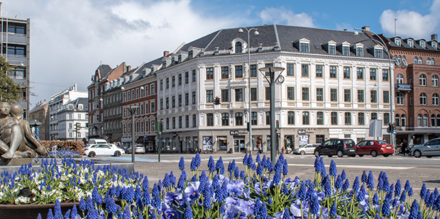 Fokus på Frederiksberg