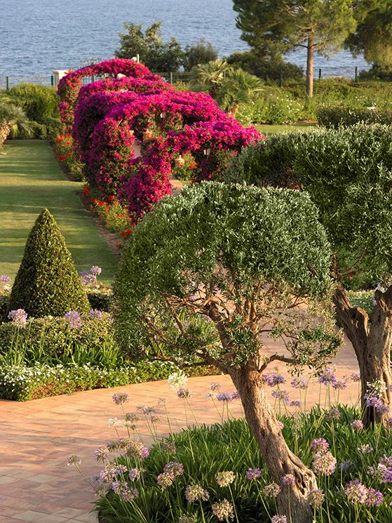 FET_Mallorca_str1403ag-108959-Gardens-Med