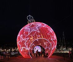 CAT_Madeira_Christmas-and-New-Year-celebrations-_-Funchal-2