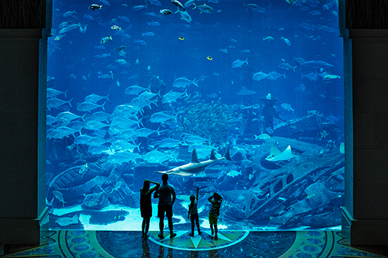 FET_Dubai_Family-infront-of-Ambassador-Lagoon
