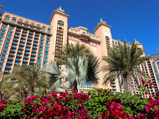 FET_Dubai_P1160719