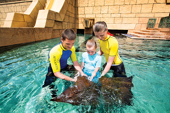 FET_Dubai_marine_and_waterpark_marine_animal_adventures_24_09_2014_730hr