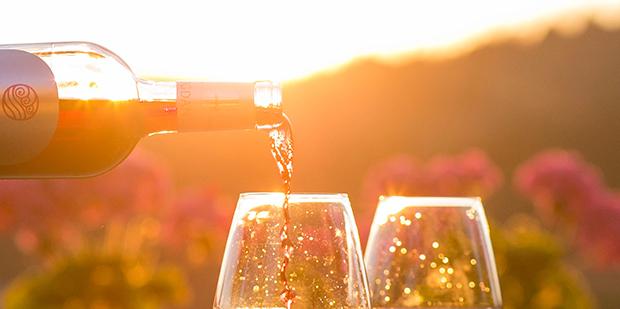 6 vinhandlere, 3 spørgsmål