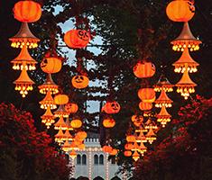 CAT_Tivoli-Halloween-i-Tivoli-26473