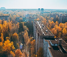 CAT_Tjernobyl_hugh-mitton-424463-unsplash