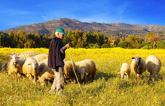 FET_Sardinien_rejsereportage_IMG_1217