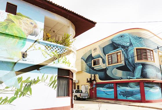 FET_Rejsereportage_aruba15