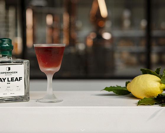 FET_Gastronomi_Gin