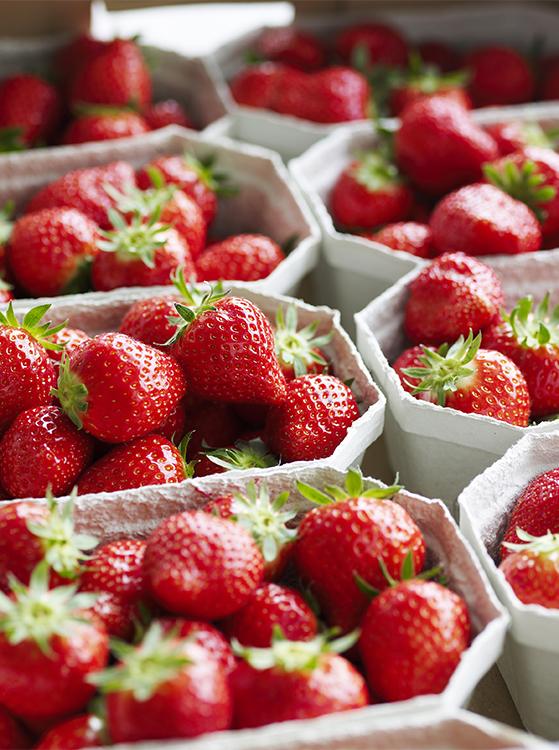 FET_Liebhaverboligen_jordbær