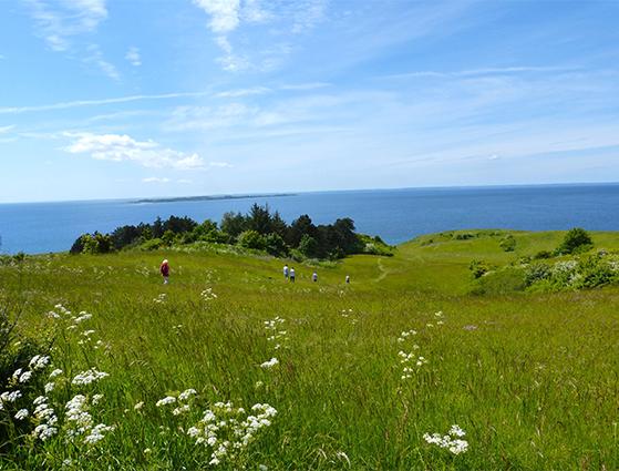 FET_Samsø_Øferie_Udsigten fra Samsøs højeste punkt - Ballebjerg er formidabel