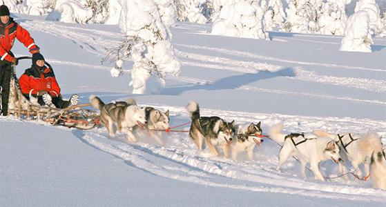 FET_Jul_Juleshopping_Julebyer_Lapland