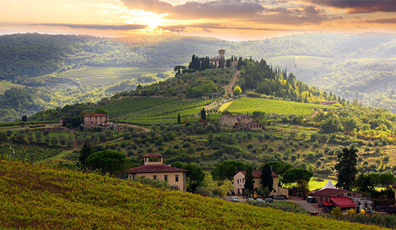 FET_RegitsesRejseunivers_rejseblog_Vinmarker-ved-Chianti-Umbrien-Italien-Hideaways