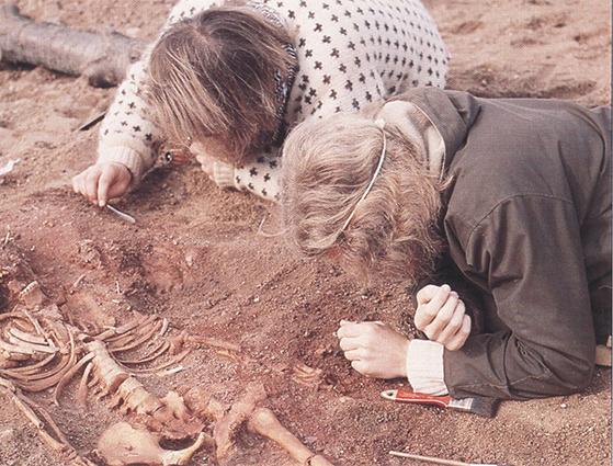 FET_Vedbækfundne_Arkæologer