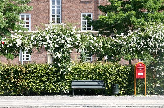 FET_Frederiksberg_Indbydende bænk på Finsensvej