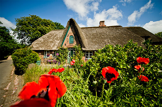 FET_Rejsereportage_Sommerliv_Sylt_Copyright-Sylt-Marketing-l-Michael-Reidinger_Keitum_Friesenhaus_DSC9162