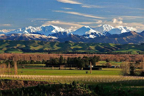 FET_NewZealandsk_vin_Mt-Beautiful-Wines_NORTH-CANTERBURY