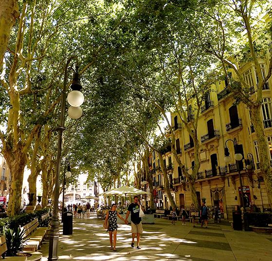 FET_Mallorca_P1140989,1
