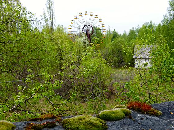 FET_Tjernobyl_Naturen-har-taget-over.