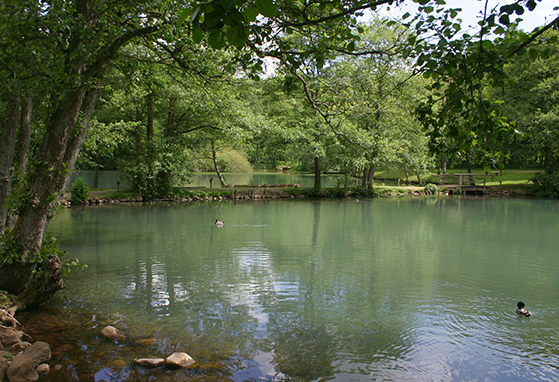 FET_Poet_Mill_Lake-Old_watermil_in_Denmark_2009_06-06b_S.Juhl