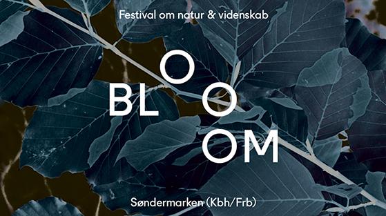 FET_Bloom