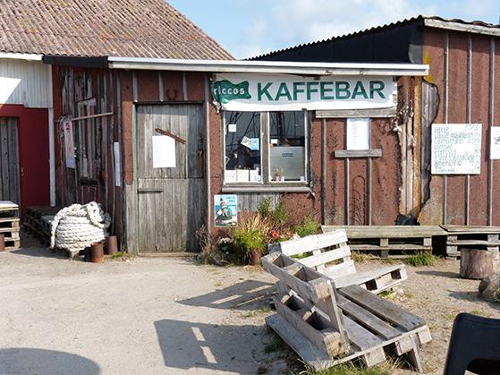 FET_Anholt_Riccos-Kaffebar-på-Anholt-Havn