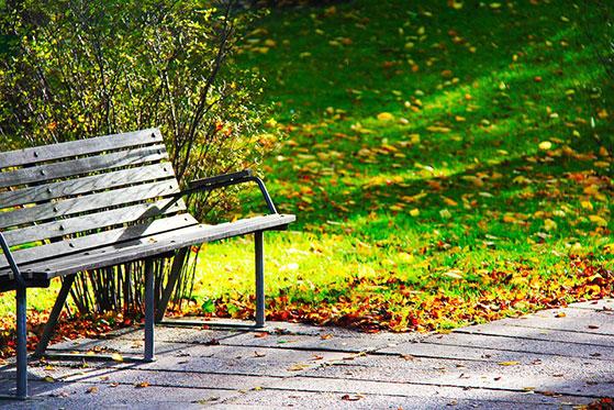 FET_Østerbro_Byvandring_Bænk-Fælledpark