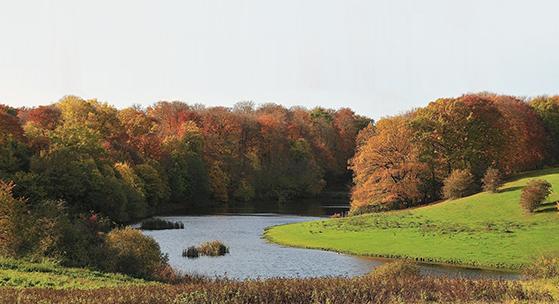 FET_Søllerød_Naturpark.4