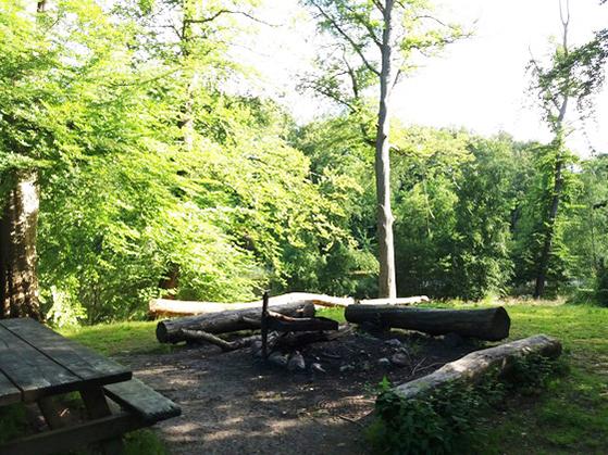 FET_Søllerød_Naturpark_Søllerød-Naturpark-1